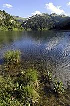 Lac de Saint Guérin, Beaufortain, Alpes, ref aa071479LE