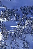 Seythenex, Haute-Savoie, Alpes, ref aa0896-01LE