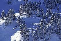 Seythenex, Haute-Savoie, Haute-Savoie, Alpes, ref aa0896-02LE