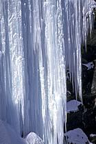 Rideau de glace, Alpes, ref aa0913-12LE