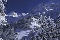 Manigod, Massif of Aravis, Haute-Savoie, Alpes, ref aa2141-28GE