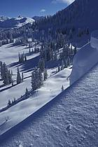 Grand Targhee, Wyoming, ref aa2935-01GE