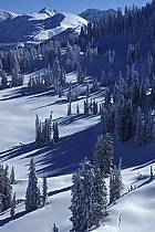 Grand Targhee, Wyoming, ref aa2935-02GE