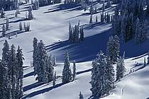 Grand Targhee, Wyoming, ref aa2935-03GE