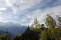 Plateau de Plaine Joux, Massif du Mont Blanc, Haute-Savoie, ref ab063576GE