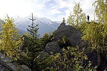 Plateau de Plaine Joux, Massif du Mont Blanc, Haute-Savoie, ref ab063577GE