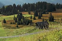 Beaufortain, Savoie, ref ae042214GE