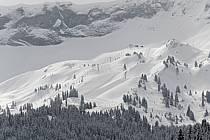 Megève, Côte 2000, Haute-Savoie, Alpes, ref ae060923LE