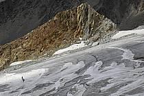 Glacier du Tour, Massif du Mont Blanc, Haute-Savoie, ref bb063350GE