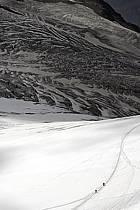 Glacier du Tour, Massif of Mont-Blanc, Haute-Savoie, Alpes, ref bb063359GE