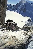 Escalade dans le massif du Mont Blanc, Massif du Mont Blanc, Haute-Savoie, ref bb3211-42GE
