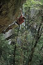 La grotte aux fées, Frangy, Haute-Savoie, ref ca2854-37GE