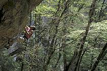 Climbing, La grotte aux fées, Frangy, Haute-Savoie, ref ca2855-05GE