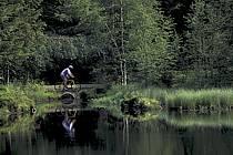 Mountain-Bike, Vosges, ref cb0618-28GE