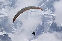 Paragliding, Massif of Mont-Blanc, Haute-Savoie, Alpes, ref cc054451GE