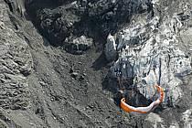 Paragliding, Glacier des Bossons, Massif of Mont-Blanc, Haute-Savoie, Alpes, ref cc054502GE
