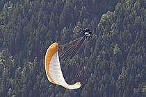 Paragliding, Massif of Mont-Blanc, Haute-Savoie, Alpes, ref cc054507GE