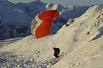 Speed flying (speed riding), Les Arcs, Savoie, Alpes, ref cc060216GE