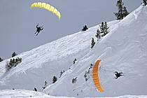 Speed flying (speed riding), Les Arcs, Savoie, Alpes, ref cc060408GE