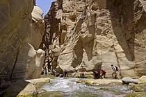 Canyon de Mujib, ref cd070602GE
