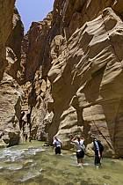Canyon de Mujib, ref cd070605GE