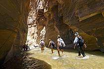 Canyon de Mujib, ref cd070612GE