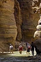 Canyon de Mujib, ref cd070629GE