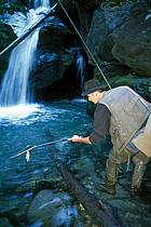 Fly fishing, Arêches, Savoie, Alpes, ref ch1236-17GE