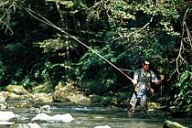Fly fishing, Arêches, Savoie, Alpes, ref ch1238-13GE