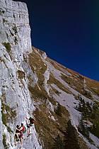 Via Ferrata des Aravis, Haute-Savoie, Alpes, ref cj2575-29GE