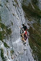 Via Ferrata des Aravis, Haute-Savoie, Alpes, ref cj2575-31GE