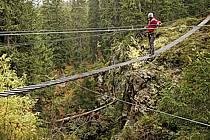 Parcours-aventure des Saisies, Beaufortain, Savoie, Alpes, ref ck042361GE