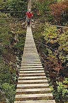 Parcours-aventure des Saisies, Beaufortain, Savoie, Alpes, ref ck042366GE