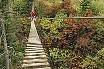 Parcours-aventure des Saisies, Beaufortain, Savoie, Alpes, ref ck042367GE