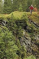 Parcours-aventure des Saisies, Beaufortain, Savoie, Alpes, ref ck042422GE