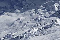 Ski dans la Vallée Blanche, Massif du Mont Blanc, Haute-Savoie, ref da050933GE