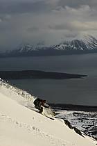 Ski freeride, ref da053531GE