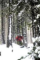 Skiing, Les Arcs, Savoie, Alpes, ref da070077GE
