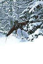 Skiing, Les Arcs, Savoie, Alpes, ref da070103GE