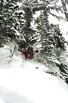 Skiing, Les Arcs, Savoie, Alpes, ref da070106GE