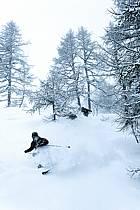 Skiing, Les Arcs, Savoie, Alpes, ref da070112GE