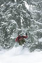 Skiing, Les Arcs, Savoie, Alpes, ref da070134GE