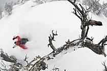 Ski hors-pistes dans le mauvais temps, Teton Pass, Wyoming - Backcountry skiing in bad weather, Teton Pass, Wyoming, ref da080595GE
