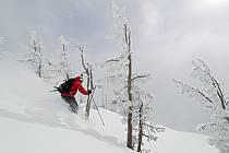 Ski hors-pistes dans le mauvais temps, Teton Pass, Wyoming - Backcountry skiing in bad weather, Teton Pass, Wyoming, ref da080604GE