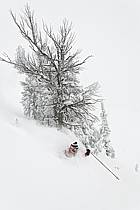 Ski hors-pistes dans le mauvais temps, Teton Pass, Wyoming - Backcountry skiing in bad weather, Teton Pass, Wyoming, ref da080607GE
