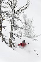 Ski hors-pistes dans le mauvais temps, Teton Pass, Wyoming - Backcountry skiing in bad weather, Teton Pass, Wyoming, ref da080615GE