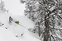Ski hors-pistes dans le mauvais temps, Teton Pass, Wyoming - Backcountry skiing in bad weather, Teton Pass, Wyoming, ref da080656GE