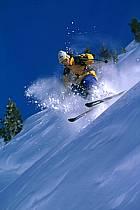 Ski-freeride, Chamonix / Le Tour, Haute-Savoie, Alpes, ref da1265-04GE