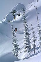 Ski-freeride, Jackson Hole, Wyoming, ref da1999-06GE