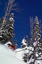 Ski-freeride, Jackson Hole, Wyoming, ref da2001-11GE